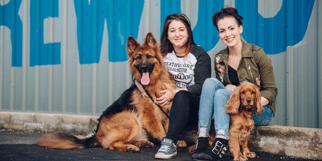 BrewDog dará uma semana de licença para quem tiver um novo cachorro